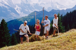 Raking hay: Tamara, Elme, Alex, and Mason.